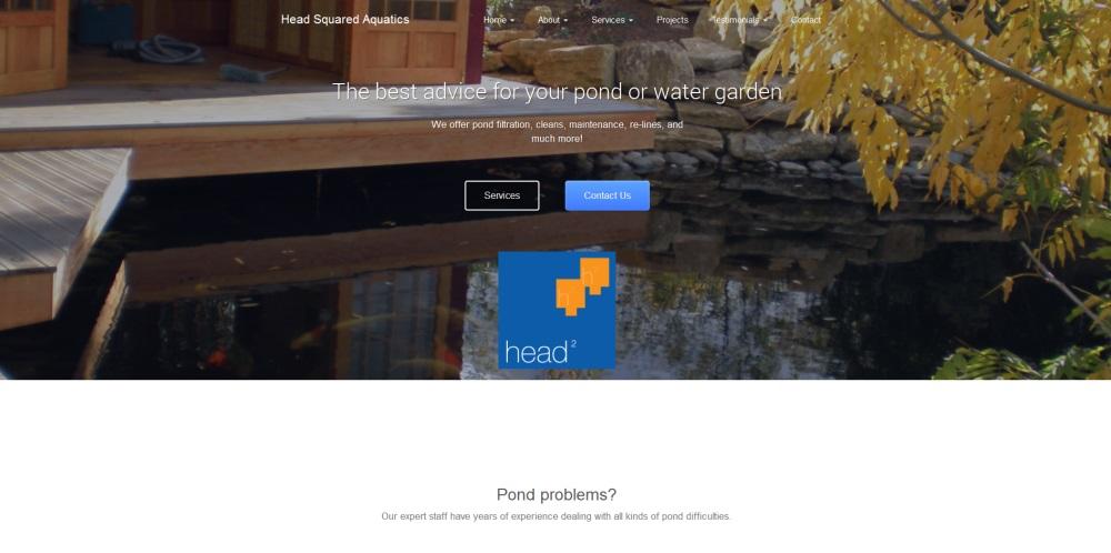 Pond Consultancy Website